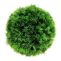 Bolas de planta