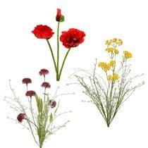 Flor de jardín y flor de prado