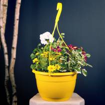 Cesta de flores Ø30cm blanco