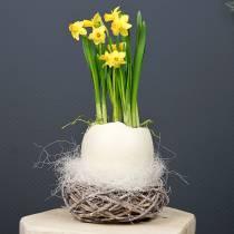 Nido de Pascua de ramitas Natural, lavado en blanco Ø13cm 3pzs