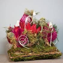 Cojín vegetal de ratán, musgo 20cm x 20cm H8cm