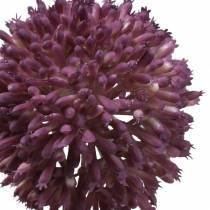 Ornamental Allium Artificial Púrpura Ø8cm 58cm