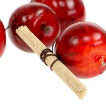 Guirnalda de manzana roja L 110cm