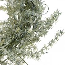 Corona de espárragos artificiales blanco, gris Corona decorativa de espárragos Ø20cm