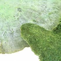 Esponja de árbol verde blanqueada 1kg