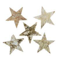 Estrellas de abedul 6cm 100p