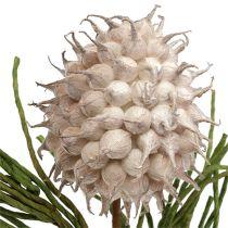 Rama floreciente Espuma Gris / Verde 65cm
