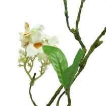Rama floreciente Blanco L 65cm 1pc