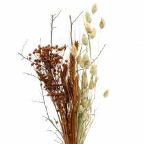 Ramo de flores silvestres naturaleza, naranja 25–60cm 65g