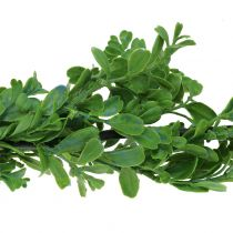 Guirnalda de boj verde 180cm