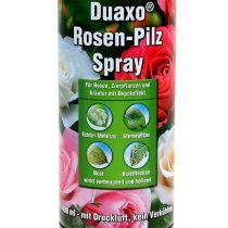 COMPO Duaxo ® Spray de Hongo Rosa 400ml