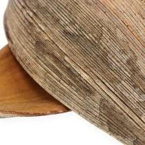 Cáscara de coco hoja de coco natural 25p