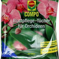 Toallitas de cuidado de hojas Compo para orquídeas 10 piezas