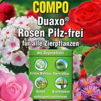 Compo Duaxo Rose sin setas 50ml