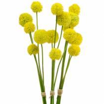 Palillo Craspedia Amarillo Flor de jardín artificial Flores de seda 15 piezas