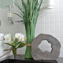Orquídea blanca con bolas de musgo y raíces 36cm