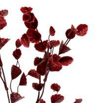 Deco rama rojo oscuro 74cm 6pcs