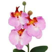Orquídea deco en maceta rosa Al.29cm