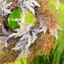 Guirnalda decorativa hierba de pampa crema artificial, guirnalda de puerta marrón Ø60cm