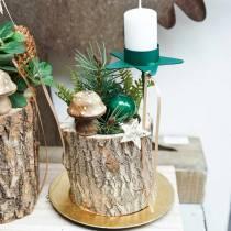Hongo decorativo madera naturaleza 5cm 6pcs