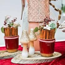 Rollos de canela decorativos 10cm 500g