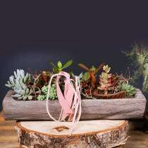 Cuenco decorativo Paulownia madera 49cm x 14cm H7cm