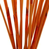 Palitos decorativos Elephant Reed Orange 20pcs