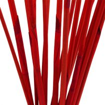 Palos decorativos, Elephant Reed Red 20pcs