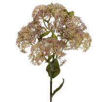 Deco rama Fetthenne rosa claro 58cm