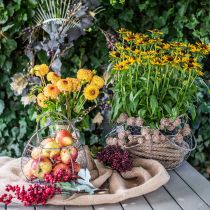 Cesta de rejilla Shabby Chic cesta de rejilla decoración de jardín Ø37 / 26cm juego de 2