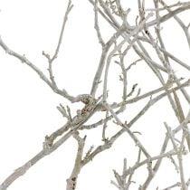 Árbol seco blanco lavado 500g