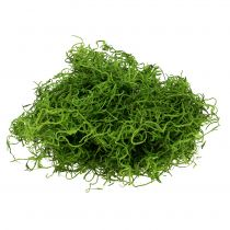 Jungle Moss Spring Green 250g