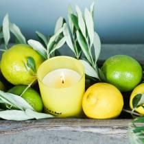 Vela perfumada en un vaso Limón y albahaca Ø7cm