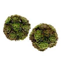 Echeveriaball 5cm Verde 4pcs
