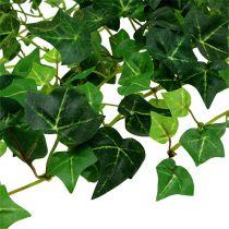 Hiedra zarcillo verde 70cm