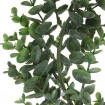 Corona decorativa verde eucalipto Corona artificial de eucalipto Ø32cm
