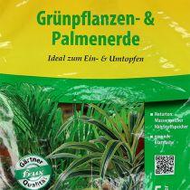 FRUX planta verde y suelo de palma 5l