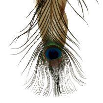 Percha de plumas pluma de pavo real 34cm 3 piezas