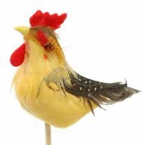 Gallo con plumas reales en el palo Naranja, Amarillo, Marrón Surtido H5-6cm 12pcs