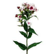 Flor de llama blanca 72cm