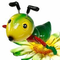 Rejilla de enchufe de jardín en la flor colorida 11cm