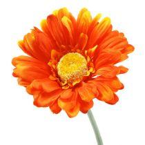 Gerbera Naranja Ø10cm L55cm 6pcs