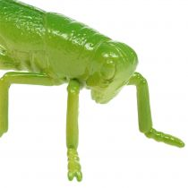 Saltamontes verde 11cm 1p