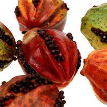 Frutas de otoño 3,5 cm rojo, marrón 24 piezas
