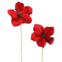 Holzblüte als Stecker Rojo Ø9cm - 12cm L45cm 15pcs
