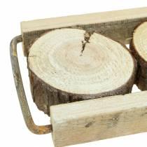 Bandeja decorativa de madera con rodajas de árbol 34cm x 12cm H3cm