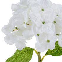 Hortensia 35cm blanco