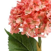 Hortensia rosa 80cm 1p