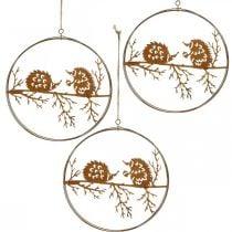 Colgante de metal, erizo en rama, decoración de otoño, anillo decorativo, marco de acero inoxidable Ø15.5cm 3ud