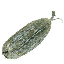 Luffa Fruit Green 14cm 10pcs